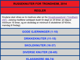 Image of the Russeknuter Trondheim 2014 web site